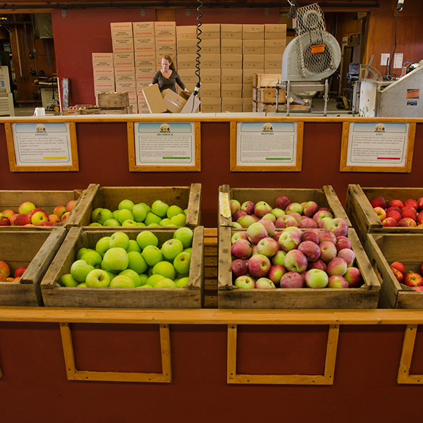 https://umassfresh.com/wp-content/uploads/cold_spring_orchard1.jpg
